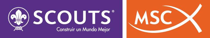 Logo Scouts MSC